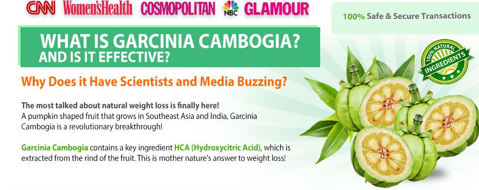 Max Fit Garcinia Cambogia